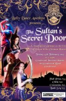 The Sultan's Secret Door Adelaide Fringe 2017